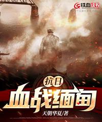 抗日 血战缅甸